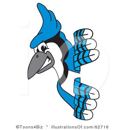 Blue jay clip art.