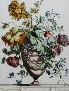 Botanical prints, Print jeans and Jeans on Pinterest.