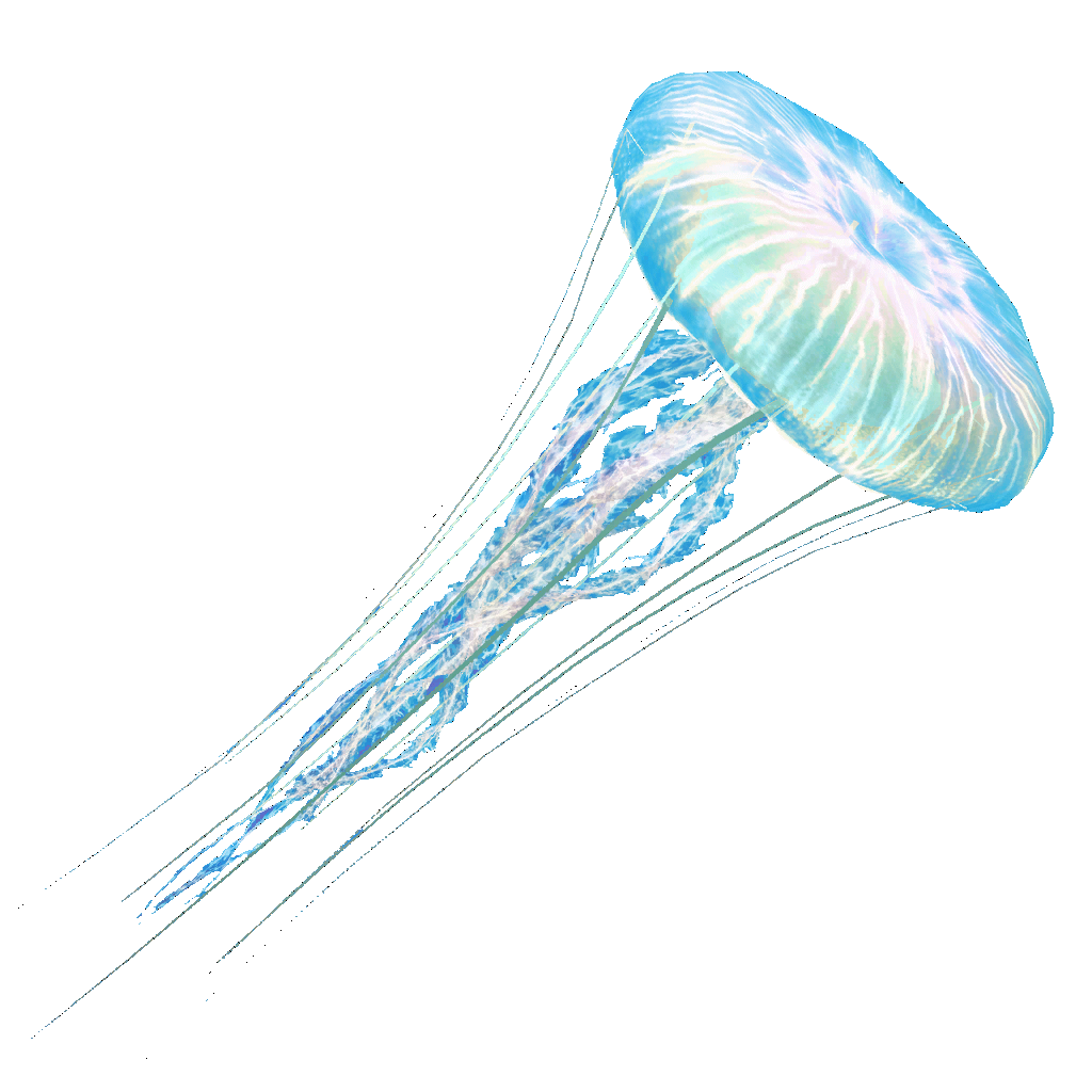 Jellyfish Png (92+ Images In Collection) #252626.