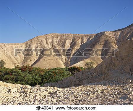 Stock Photography of Israel, Jericho, Mountain Scenery djh40341.