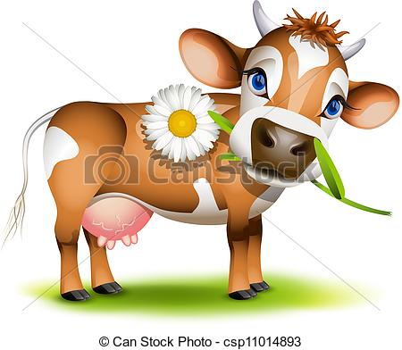 Little Jersey cow eating daisy.