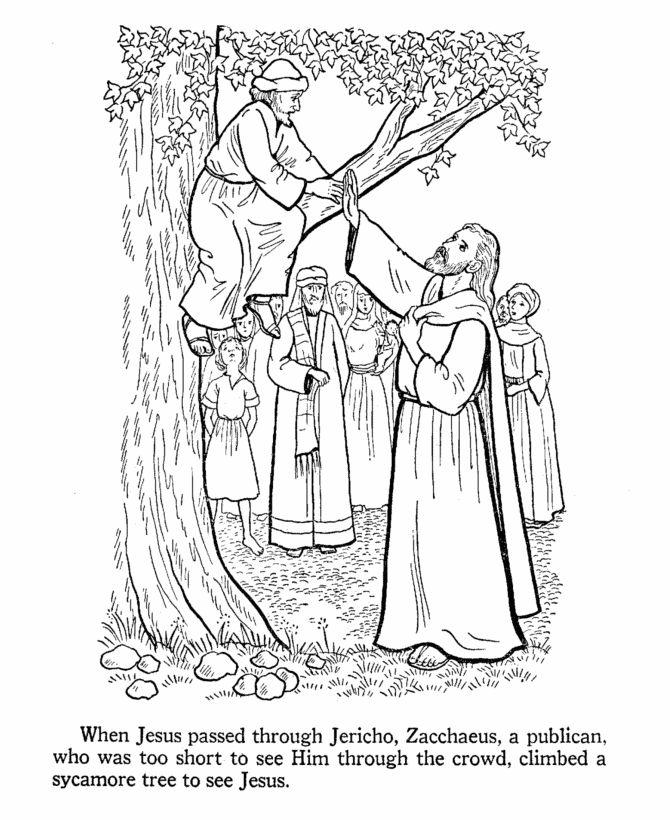 17 Best images about Bible: Jesus & Zacchaeus on Pinterest.