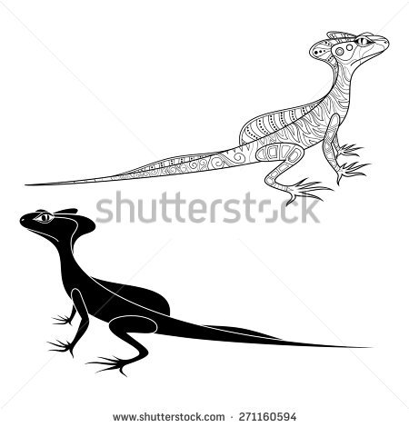 Basilisk Lizard Stock fotos, billeder til fri afbenyttelse og.