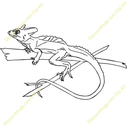 Basilisk Lizard Clipart.