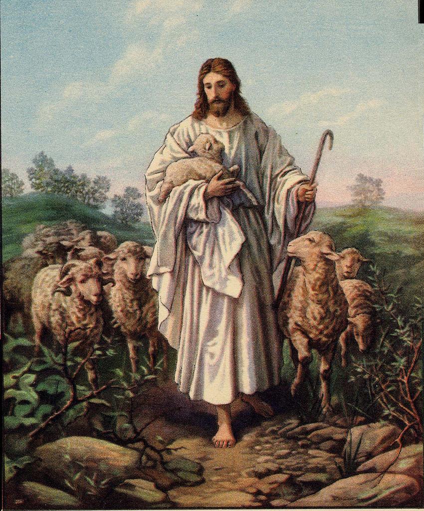 Jesus Pictures : My Good Shepherd.