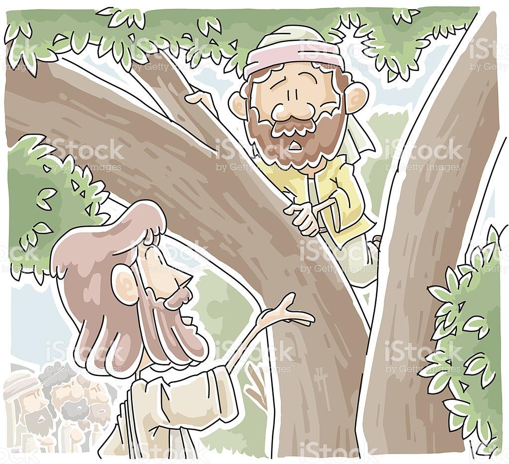 Zacchaeus Who Climbed A Tree To See Jesus stock vector art.