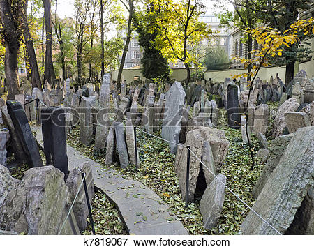 Picture of Headstones in the Jewish cemetery k7819067.