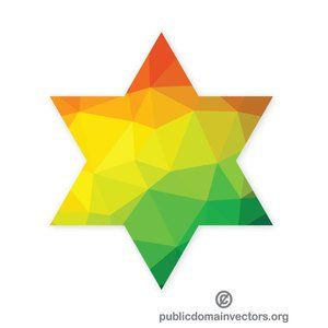 Jewish star vector image.