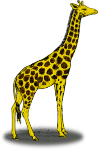 Giraffe Clip Art at Clker.com.