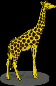 Giraffe Clip Art at Clker.com.