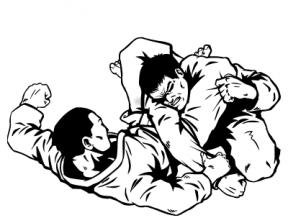 Brazilian Jiu Jitsu Clip Art Clipart.