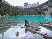 Camping By Joffre Lake Stock Photo.