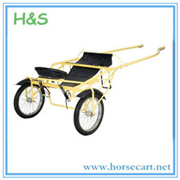 Two wheels jog cart for driving.