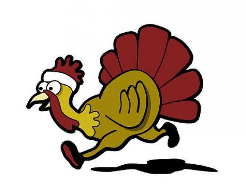 Showing post & media for Jogging turkey trot cartoon.