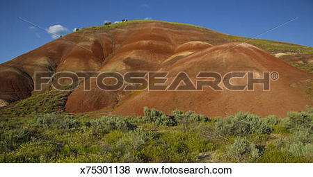Pictures of Painted Hills, John Day Fossil Beds, Oregon x75301138.