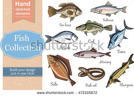 Fishery Stock Photos, Royalty.