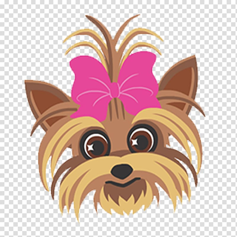 Yorkshire Terrier Dog breed Its JoJo Siwa Singer, jojo siwa.