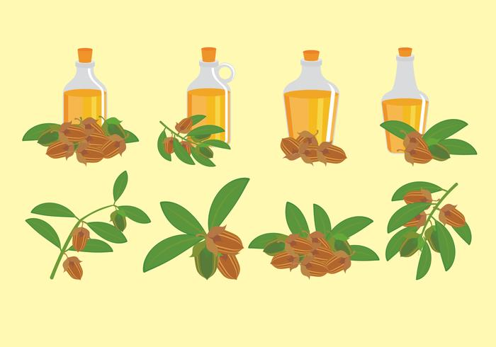Jojoba Icons Set.