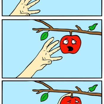 Apple Picking Joke Videos, Articles, Pictures.