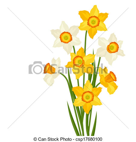 Jonquil Clipart Vector and Illustration. 152 Jonquil clip art.