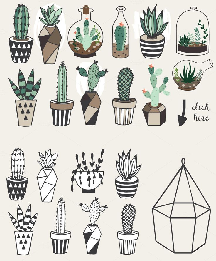 1000+ ideas about Plant Drawing on Pinterest.