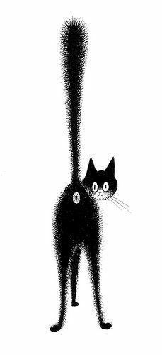 Black Cat Eye Mask With Whiskers & Eyelash Trim Fancy Dress.