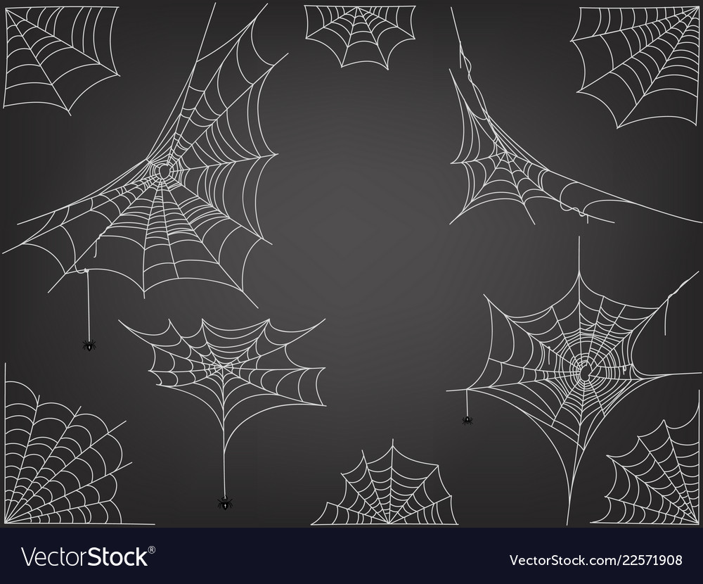 Black spiders and different web clipart.
