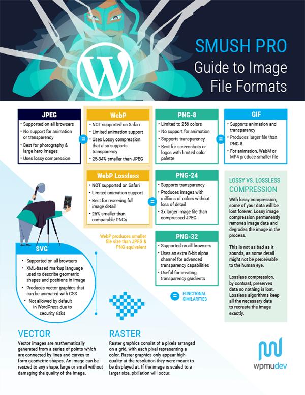 Best Image Formats for Websites Compared! PNG, JPG, GIF, and WebP.