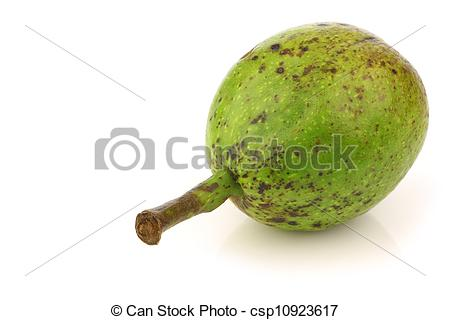 Stock Photography of fresh walnuts (Juglans regia).