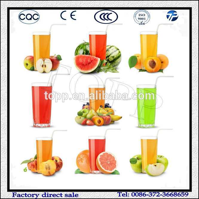 Electric Fruit Juice Press Machine For Sale.