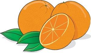 Oranges Clipart Image.