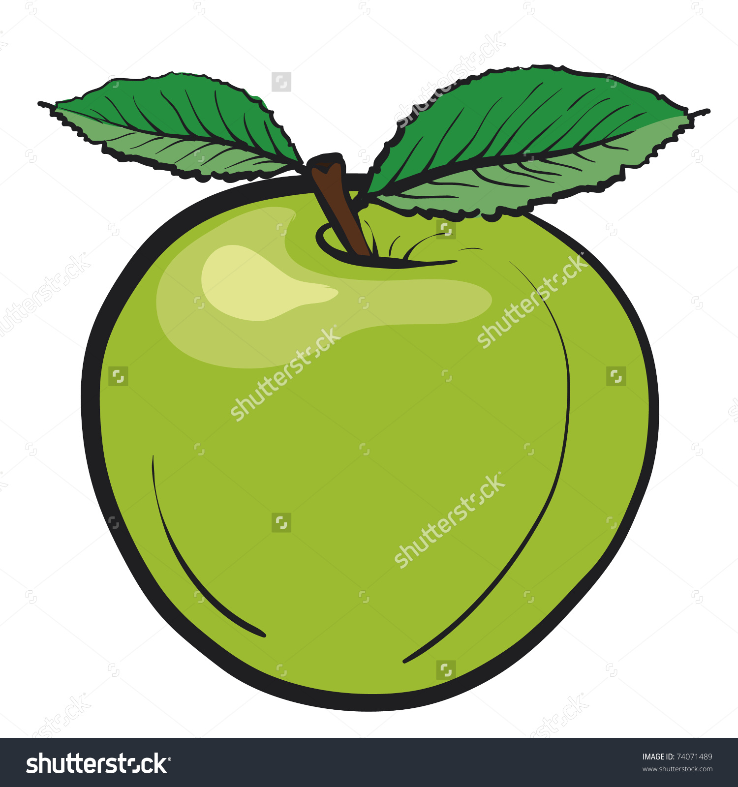 Juicy Green Apple. Fresh Fruit With Green Leaves. Healthy Food.