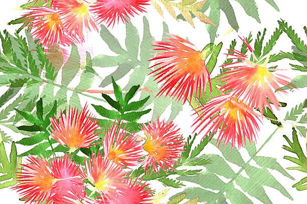 Pink Silk Tree Clip Art, Vector Images & Illustrations.