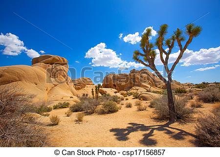 Stock Images of Joshua Tree National Park Jumbo Rocks in Yucca.