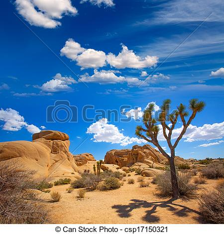 Stock Photo of Joshua Tree National Park Jumbo Rocks in Yucca.