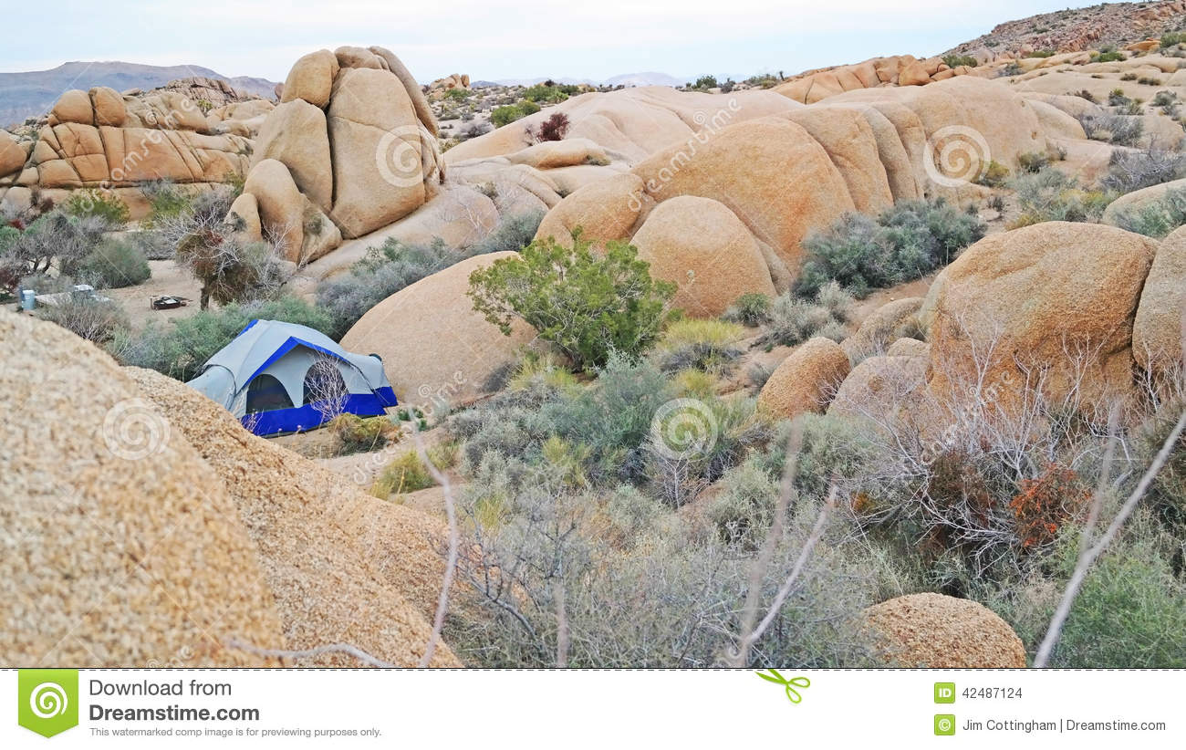 Tent Camping In Joshua Tree National Park.