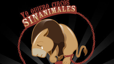 Petition · Ayuntamiento de Jumilla: Prohíban los circos con.