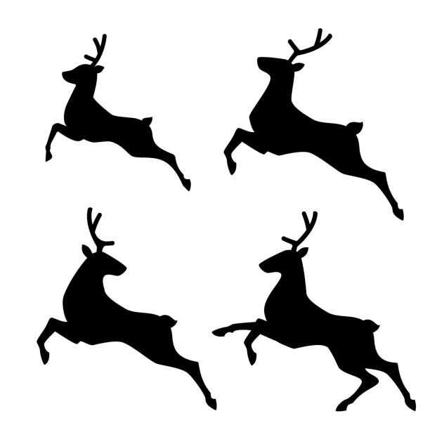 Best Deer Jump Illustrations, Royalty.