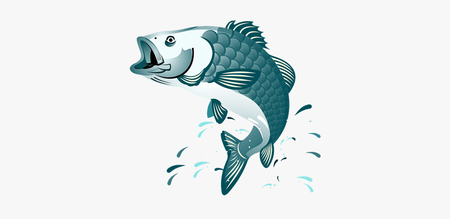 Fish Png Jumping.