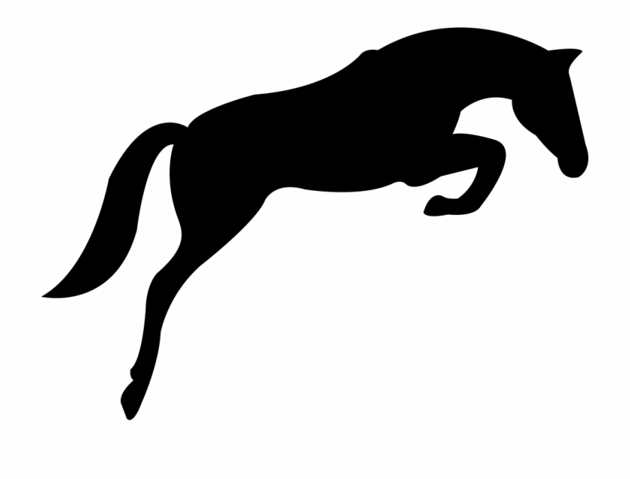 Black Jumping Horse With Face Looking To The Ground.