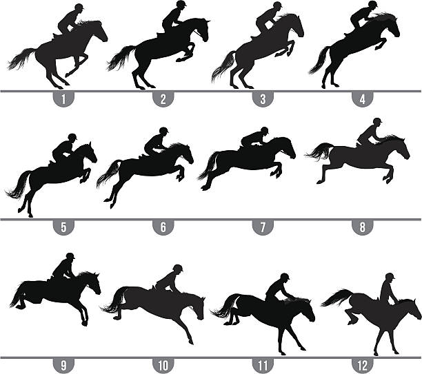 Best Horse Jumping Illustrations, Royalty.