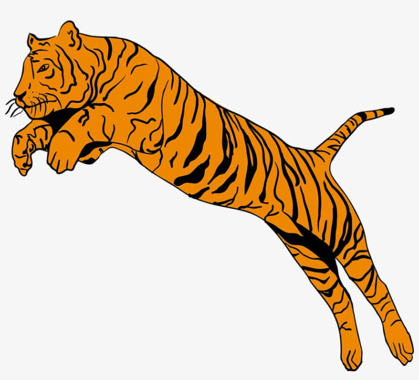 Free Jumping Tiger Png.