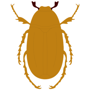 JUNEBUG clipart, cliparts of JUNEBUG free download (wmf, eps.
