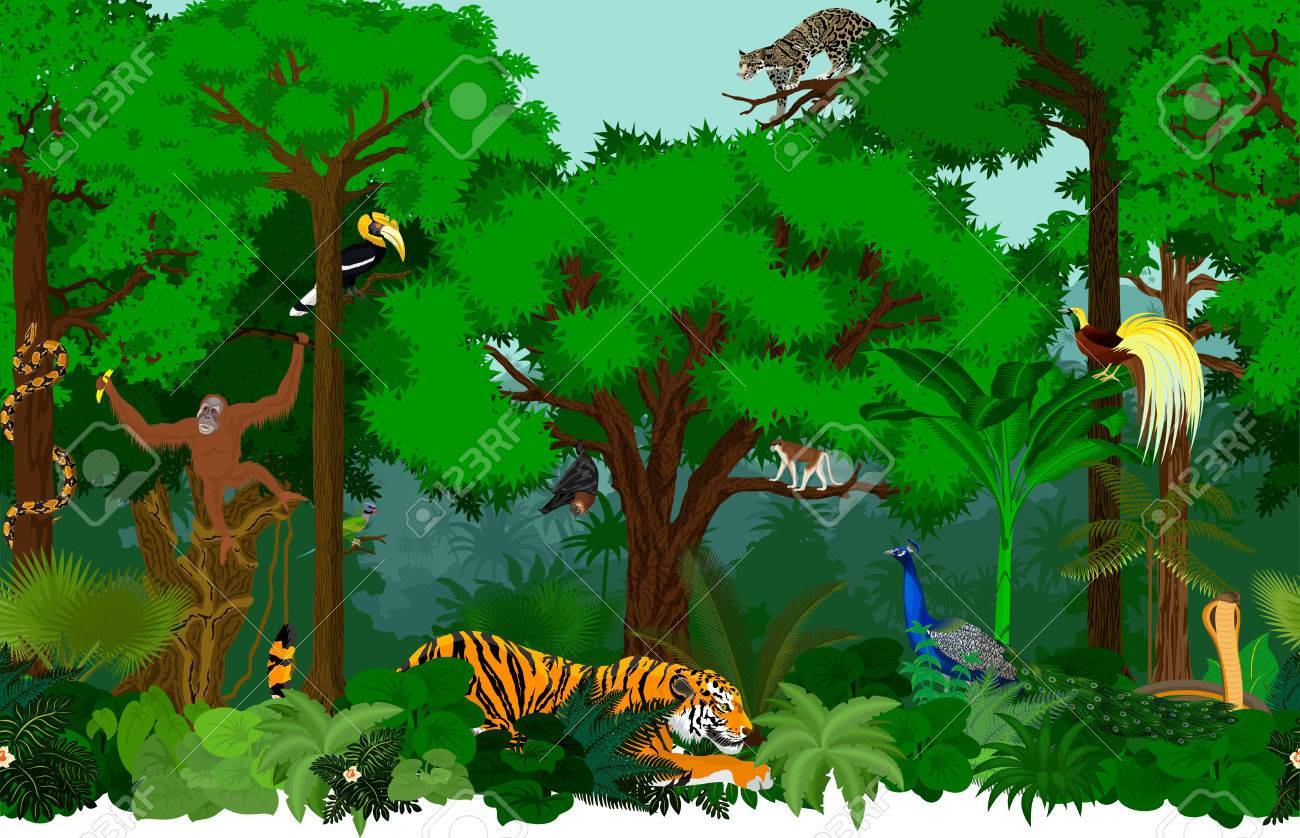 Vector asian seamless tropical rainforest Jungle background pattern...
