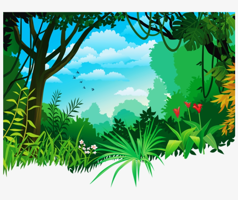 Download Jungle Background Png Clipart Tropical And.