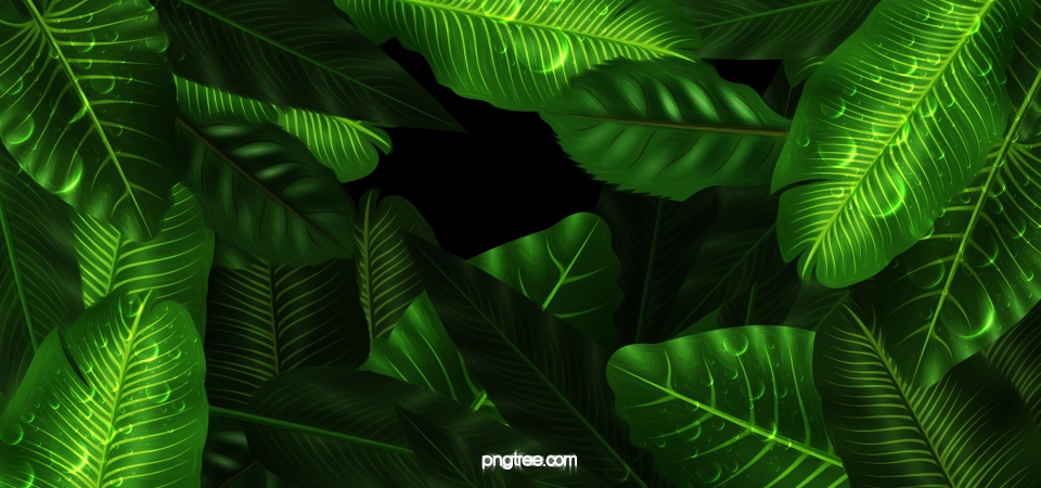 Jungle Background Photos, Jungle Background Vectors and PSD Files.