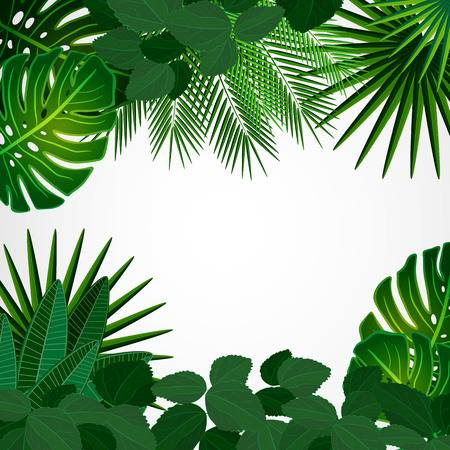 94,467 Jungle Foliage Stock Vector Illustration And Royalty Free.