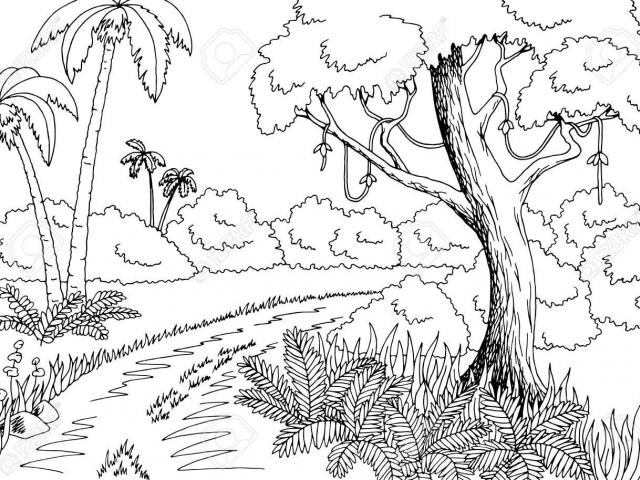 Free Jungle Clipart, Download Free Clip Art on Owips.com.