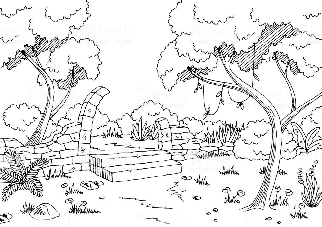 25+ Jungle Clip Art Black And White Landscape Pictures and Ideas on.