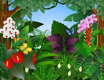 Rainforest Flowers Clip Art.